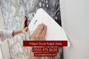 Poligon Duvar Kağıdı Ustası